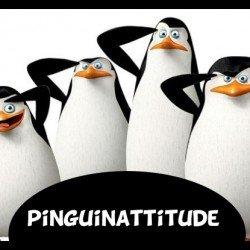 pinguinattitude